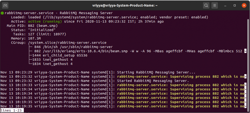 RabbitMQ Server Running